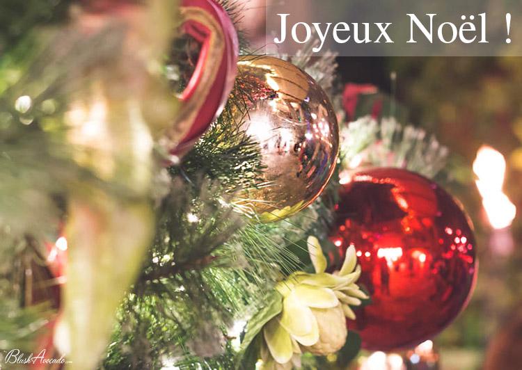 Blush Avocado vous souhaite un joyeux Noël !